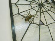 Pewter spider